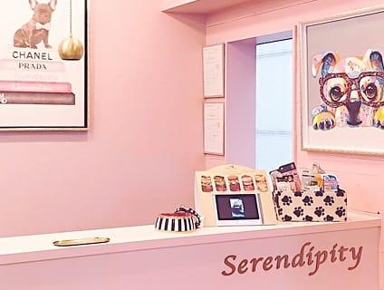 Serendipity 西麻布店の画像