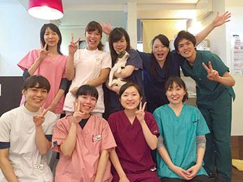 ヴィータ動物病院[新卒]の画像1