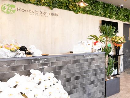 [Roots動物病院]動物看護師の募集![アルバイト・パート/奈良県生駒市]No.110_bの画像
