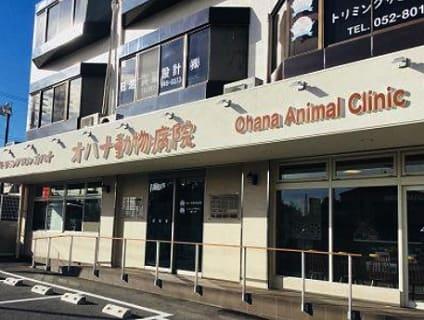 【オハナ動物病院/愛知県日進市】獣医師先生を募集しています!【正社員】No.110_b画像