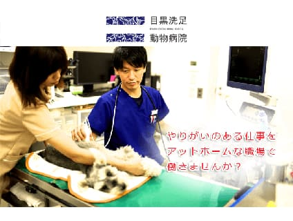 [目黒洗足動物病院]獣医師の募集!![正社員/東京都目黒区]画像