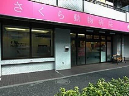 <さくら動物病院>動物看護師の募集[アルバイト・パート][東京都杉並区]No.104_d_a0b7F000000OU3ZQAW画像