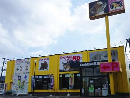 【Coo&RIKU(クーアンドリク) 福島店】ショップ店員さん(正社員)募集中♪[福島県福島市]画像