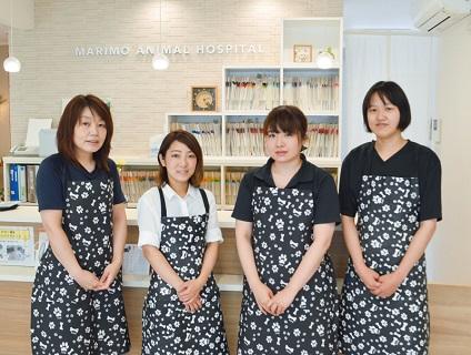 まりも動物病院(東京)の画像