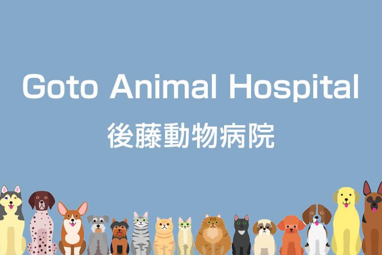 後藤動物病院の獣医師募集画像