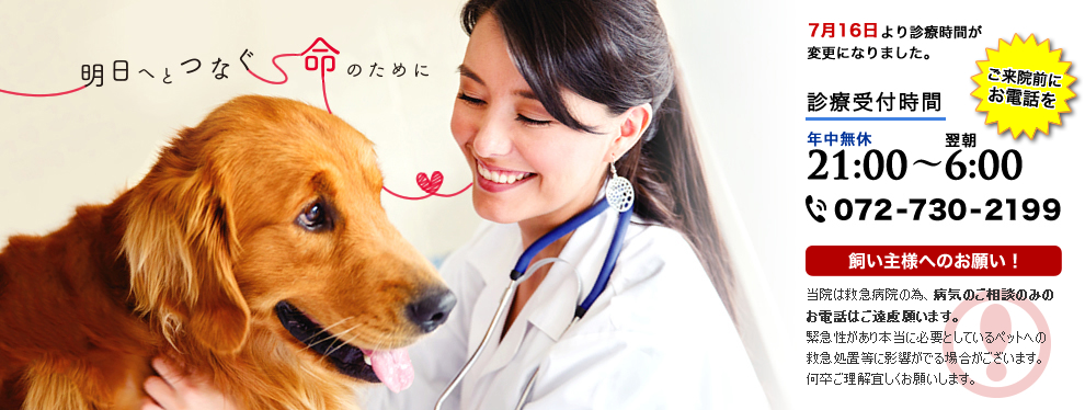 北摂夜間救急動物病院の獣医師募集(アルバイト)画像