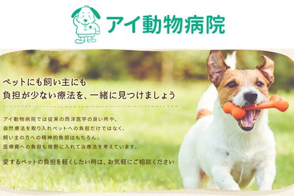 アイ動物病院の獣医師募集(アルバイト・パート)画像