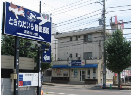 ◇◆【松戸市】獣医師(正社員)募集◆◇未経験スタート可能!ときわだいら動物病院の求人画像