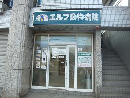 【エルフ動物病院/動物看護師(正社員)募集】摂津市にある動物病院です。地域の皆様から愛される病院を一緒に目指していきましょう♪画像