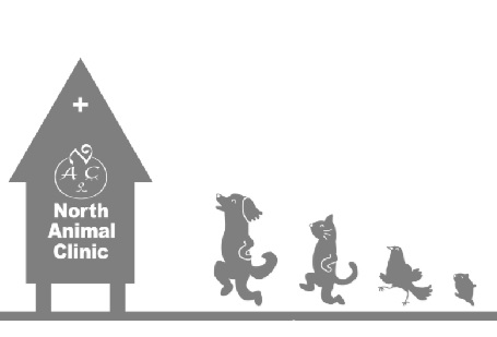【ノースアニマルクリニック/獣医師(契約社員)募集】大切な家族の一員であるペットの健康をサポート★頼れる動物のお医者さんです(^×^)ノの画像