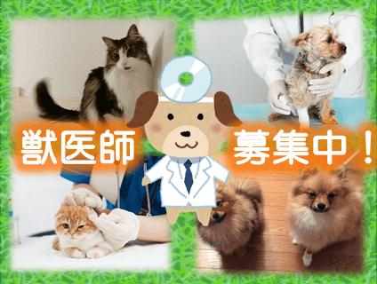 病院 井上 動物