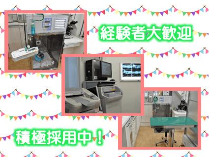 大阪府 大阪市此花区 の モコ動物病院 の情報 評判  …