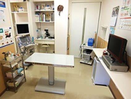 もろ の 木 動物 病院